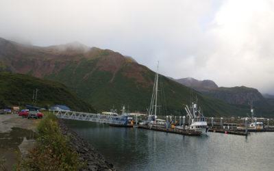 12.09.17 – Süd-Alaska, 56°15,84 N 158°05,36 W